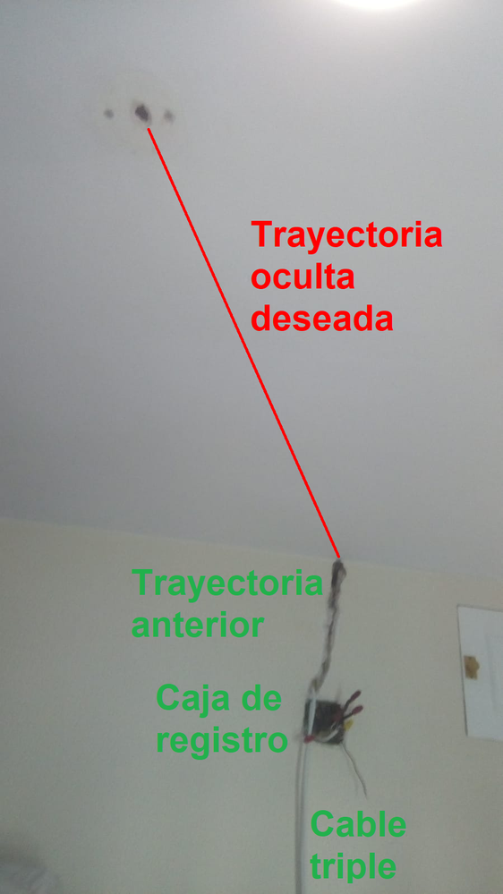 duda foro lm.png